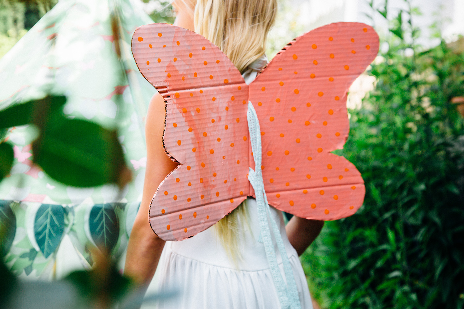 DIY Cardboard Butterfly Wings